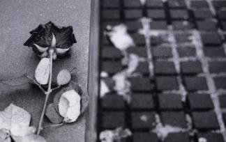 Holocaust Memorial - Alannah Messett Photography